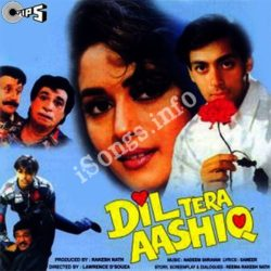 Dil Tera Aashiq Songs Free Download (Dil Tera Aashiq Movie Songs)