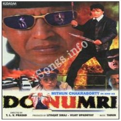 Do Numbri Songs Free Download (Do Numbri Movie Songs)