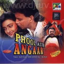 Phool Aur Angaar Songs Free Download (Phool Aur Angaar Movie Songs)