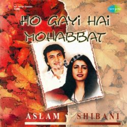 Aslam Shibani - Ho Gayi Hai Mohabbat Songs Free Download (Aslam Shibani – Ho Gayi Hai Mohabbat Movie Songs)