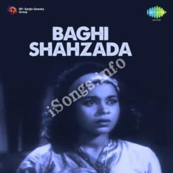 Baghi Shahzada Songs Free Download (Baghi Shahzada Movie Songs)