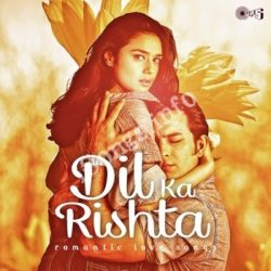 Dil Ka Rishta Romantic Love Songs Songs Free Download (Dil Ka Rishta Romantic Love Songs Movie Songs)