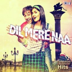 Dil Mere Naa Collection Of Bollywood Hits Songs Free Download (Dil Mere Naa Collection Of Bollywood Hits Movie Songs)