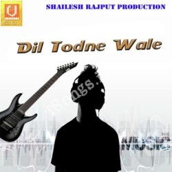 Dil Todne Wale Songs Free Download (Dil Todne Wale Movie Songs)