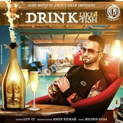 Drink Like A Fish Songs Free Download (Drink Like A Fish Movie Songs)