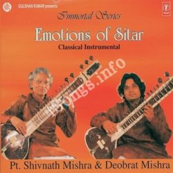 Emotions Of Sitar