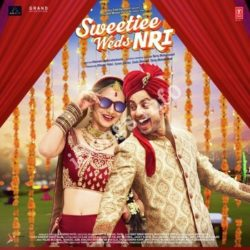 Sweetiee Weds NRI Songs Free Download - N Songs (Sweetiee Weds NRI Movie Songs)