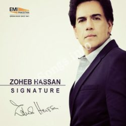 Zoheb Hassan Signature Songs Free Download (Zoheb Hassan Signature Movie Songs)